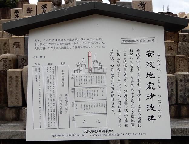 安政地震津波之碑 (2)
