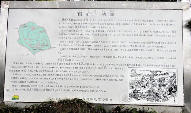 37国府台城跡 (1)