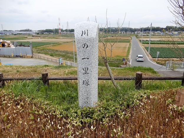 42川の一里塚 (1)