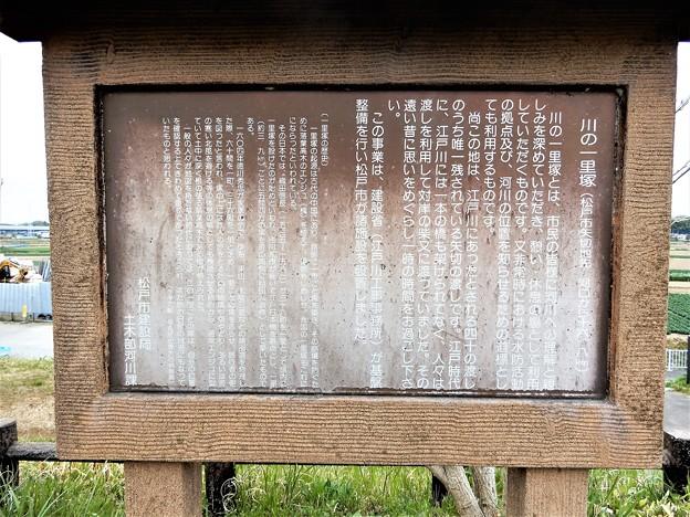 42川の一里塚 (2)