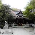 Photos: 52鳥越神社 (3)