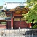 Photos: 13徳川綱吉霊廟勅額門 (3)
