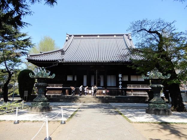14寛永寺根本中堂 (1)