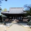 Photos: 14寛永寺根本中堂 (1)