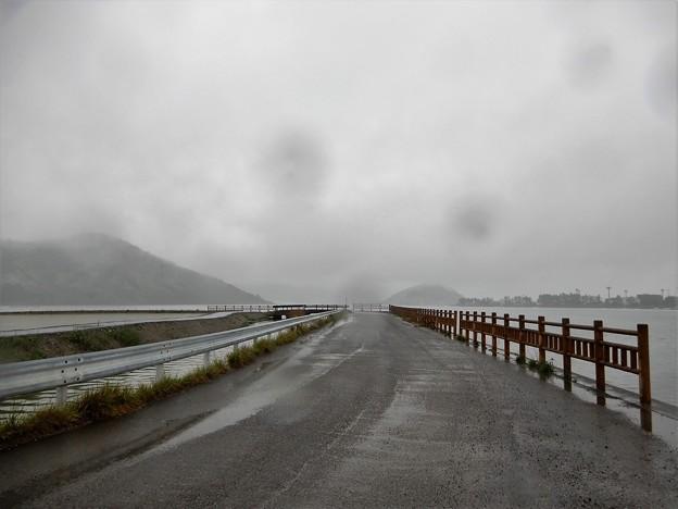 06久々子湖 (3)