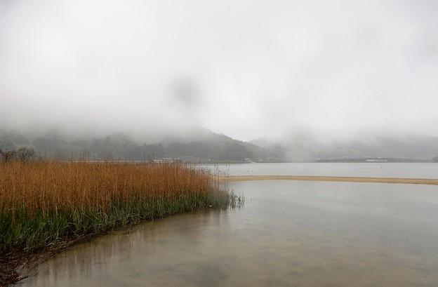 06久々子湖 (4)