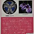 Photos: 45宮崎市のマンホールカード (2)