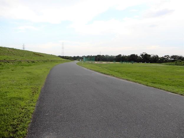 淀川自転車道