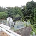 Photos: 墓地