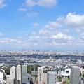 Photos: 墓地から大阪平野遠望