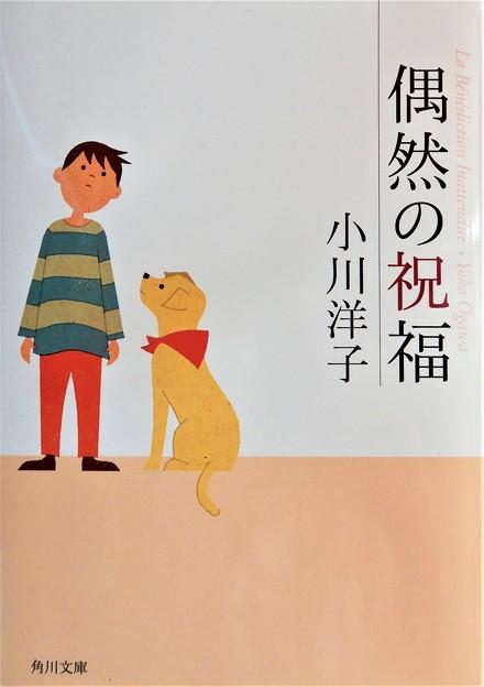 Photos: 小川洋子「偶然の祝福」