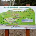 22さこし歴史と自然の森ウオーキングマップ