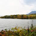 阿寒湖の紅葉