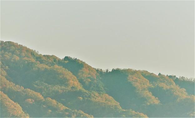 今日の山2019.12.1.