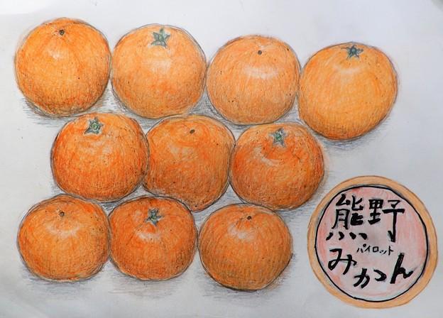 熊野の蜜柑from 槇麻呂さん