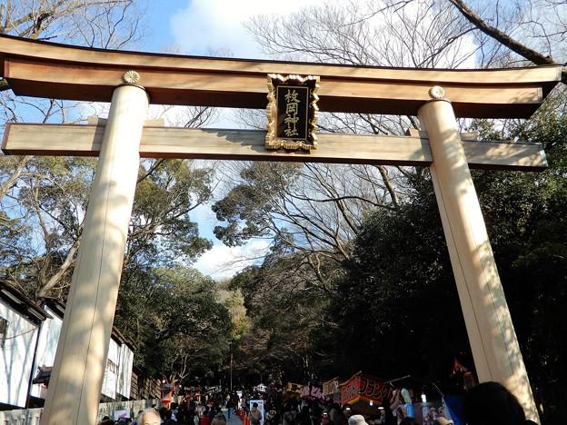 枚岡神社 (1)