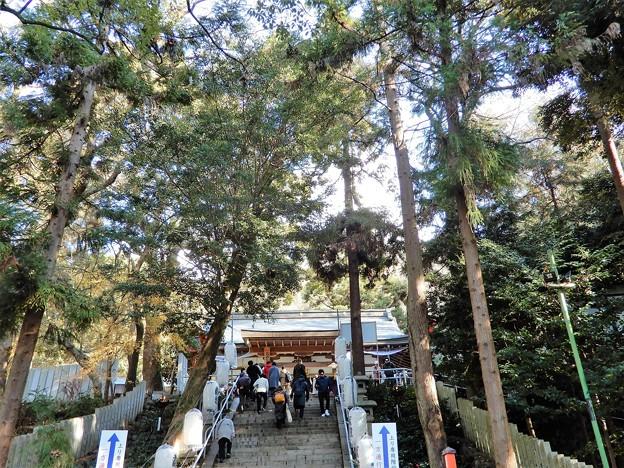 枚岡神社 (2)