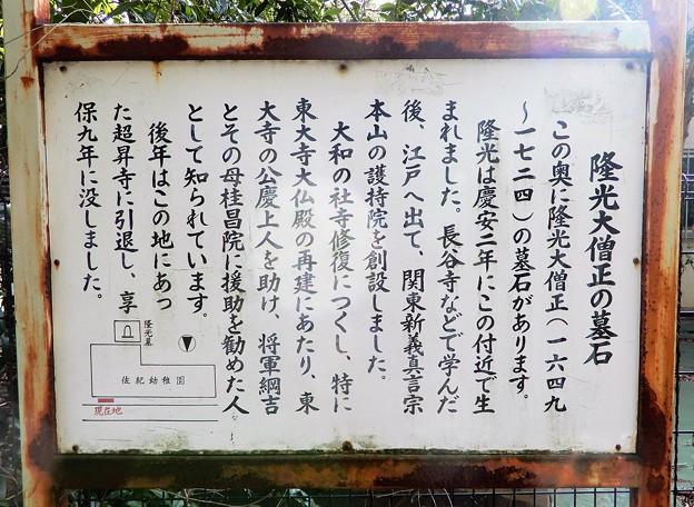 隆光大僧正墓 (4)