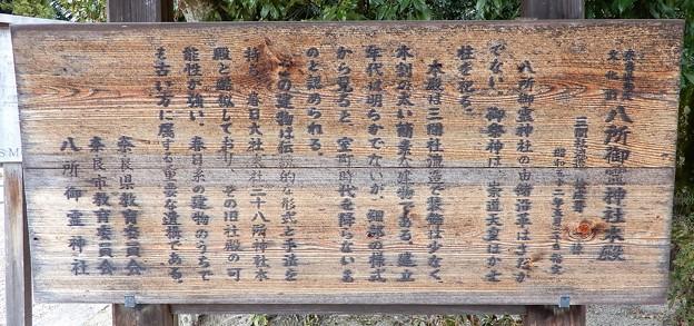 八所御霊神社 (3)