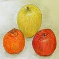 Photos: リンゴ&デコポン