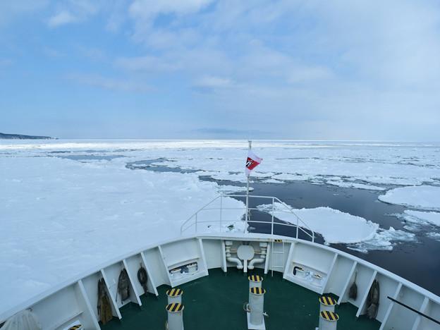 網走、おーろら号流氷観光船の船首(左の岬は能取岬)