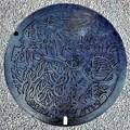 894-0000奄美市のマンホール (1)