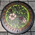 791-0001松山市のマンホール(汚水)・カラー版