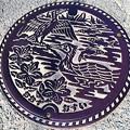 795-0000大洲市のマンホール(汚水)