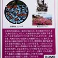 Photos: 37大洲市のマンホールカード (2)
