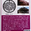 Photos: 37東温市のマンホールカード (2)