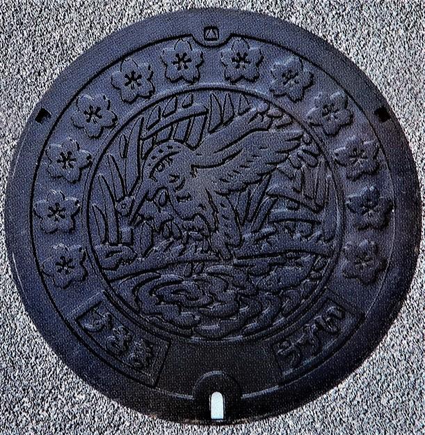 Photos: 785-0000須崎市のマンホール