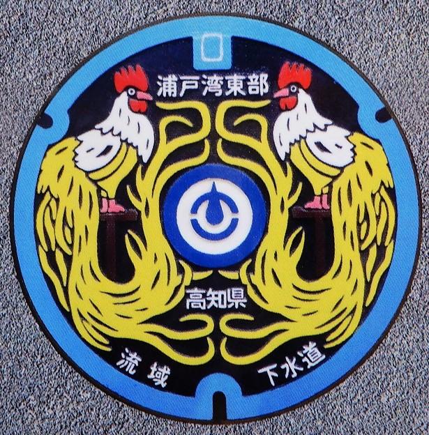 Photos: 高知県流域下水道のマンホール