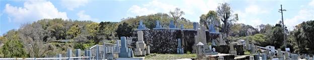 墓地から山側を眺めてみれば (2)