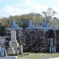 Photos: 墓地から山側を眺めてみれば (2)