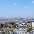 墓地から大阪望
