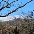 神津嶽下、腰掛石から生駒山を望む (2)