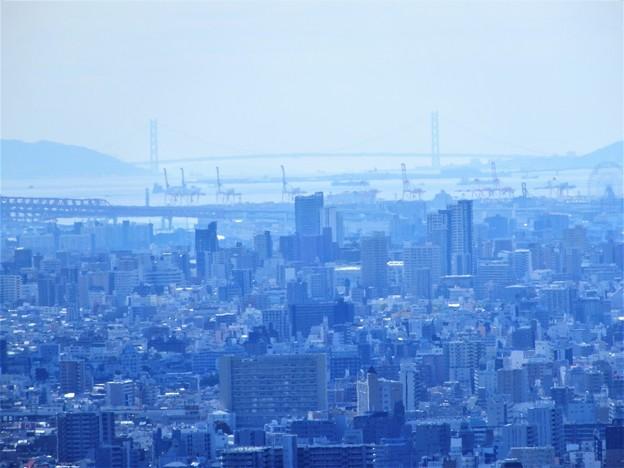枚岡展望台から明石大橋を望む (1)