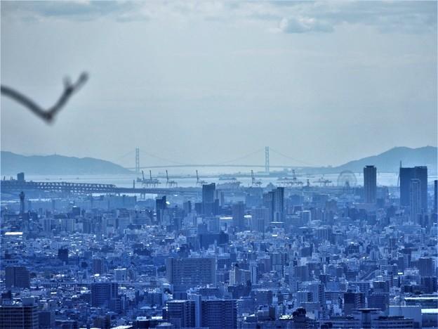 枚岡展望台から明石大橋を望む (2)