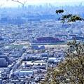枚岡展望台下から花園中央公園を望む (1)