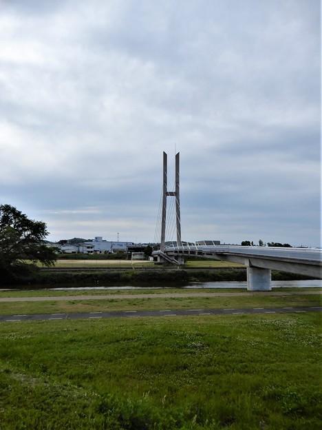 石川サイクル橋 (1)
