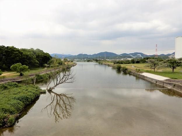 石川サイクル橋から下流を望む