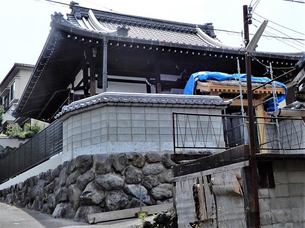 Photos: 教覚寺(2)