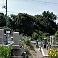 Photos: 墓参20200605 (1)