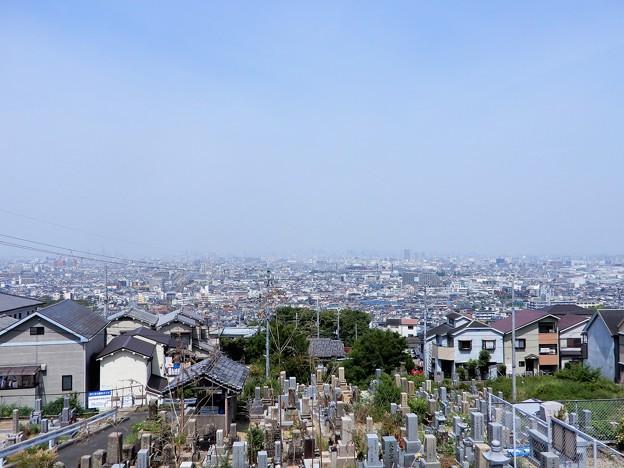 墓参20200605 (2)