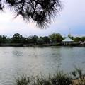 Photos: 弁天池公園 (3)