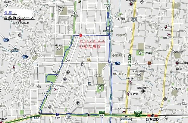 緩衝緑地公園地図