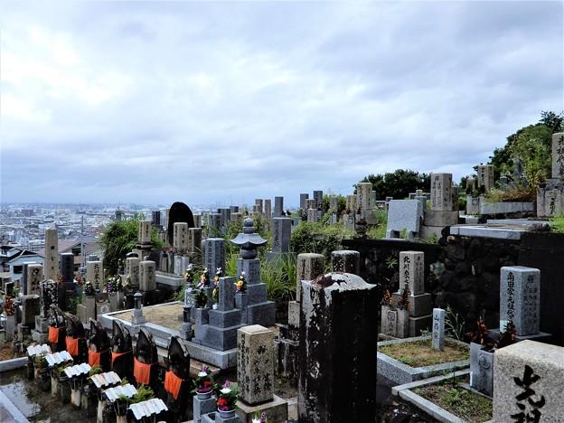 2020年7月墓参 (1)