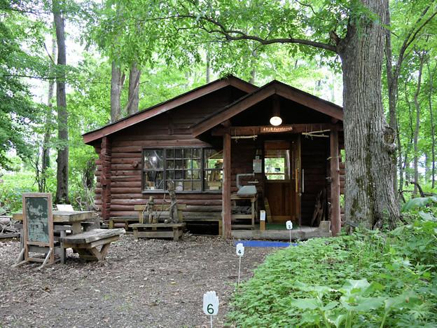 麓郷の森  木力工房