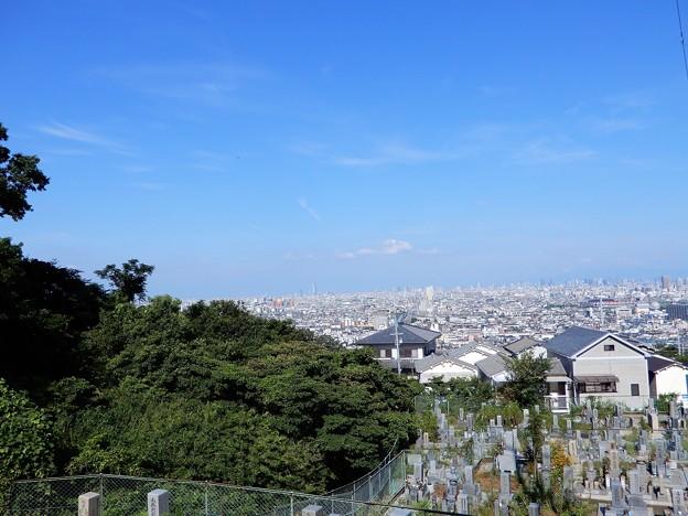 墓地からの眺め2020.8.1 (1)