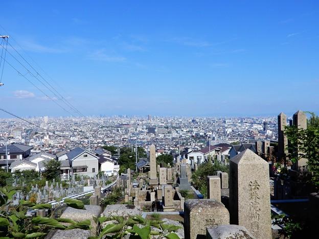 墓地からの眺め2020.8.1 (2)